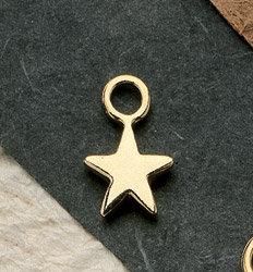 Texas Star Charm Pair