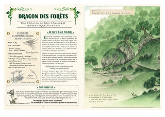 9782370511133-guide-secret-chasseur-drag