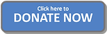 Donate-Now-Button-740x236.png