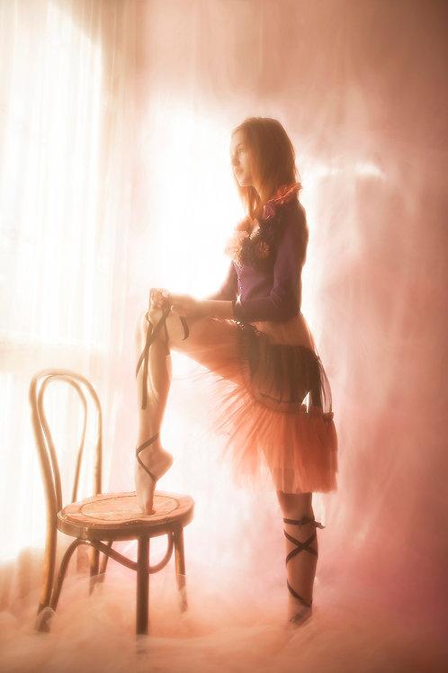 Pink & Black Sheer Tulle Skirt