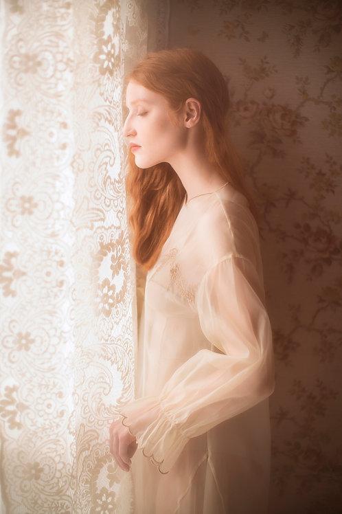Romantic Cream Organza Embroidered Dress