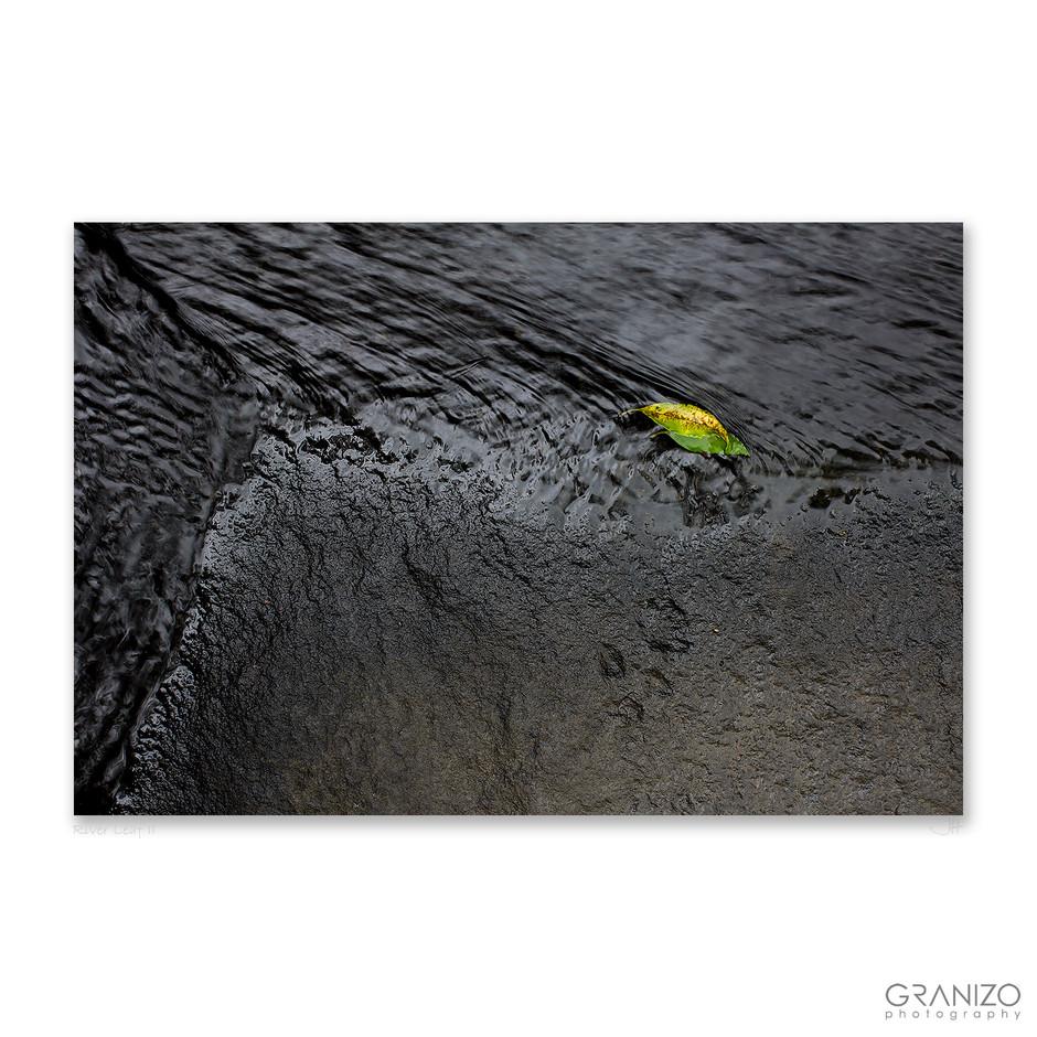 River Leaf 2