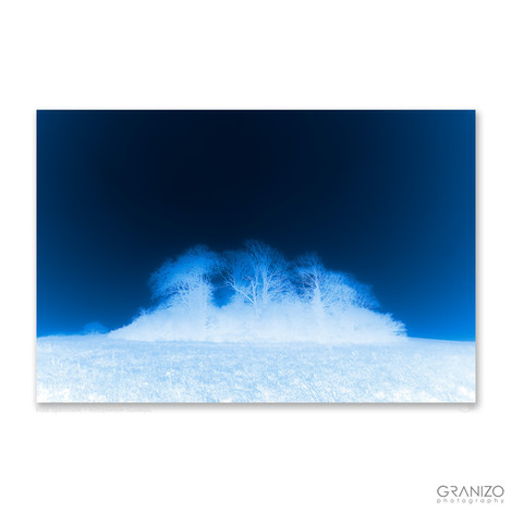 blue spectrum - wittenham clumps