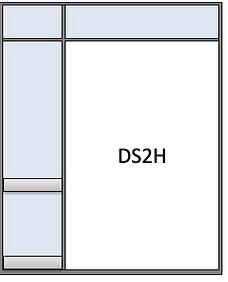 DS2H.jpeg