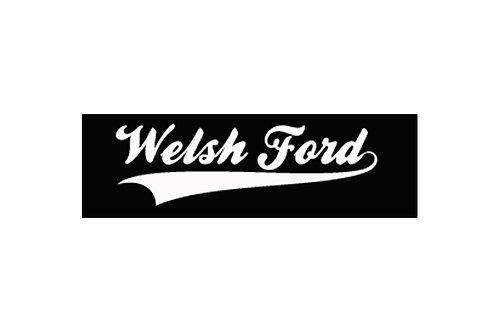Welsh Ford Gel Badge v2