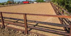 Elite Equestrian Arena
