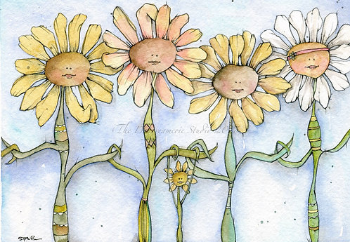Daisy Chain Gang