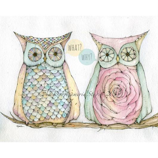 Rebel Owls
