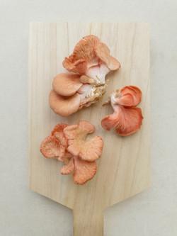 Mushrooms prepared