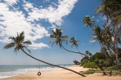 Sri Lanka beach and swing