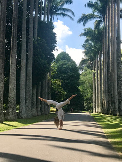 Handstand yoga pose in a tree lined avenue
