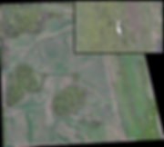 High resolution orthophoto