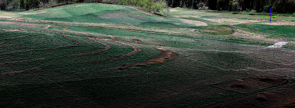 Point cloud suvey