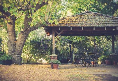 Mandia backyard