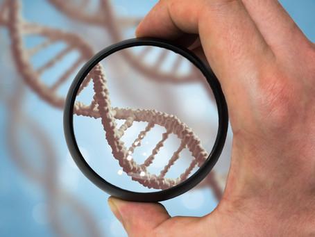 חשיבות הגיוון הגנטי בבית הגידול