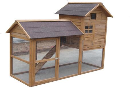 בניית לול תרנגולות