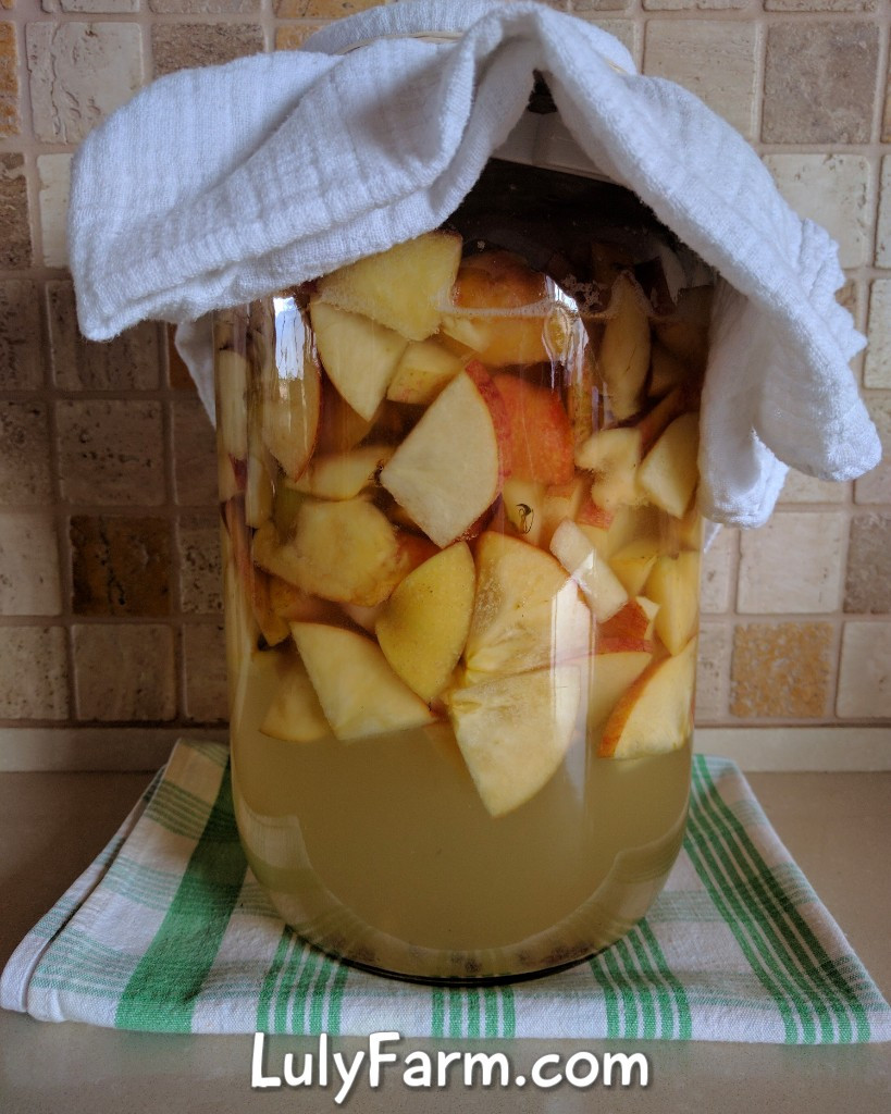 חומץ תפוחים ביום השלישי להכנה