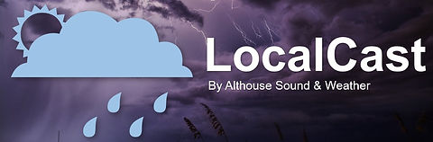 LocalView-NormalLogo_edited.jpg