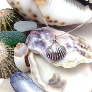 Silver Weymouth Sea Shell Pendant