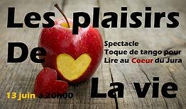 plaisir de la vie + texte.jpg