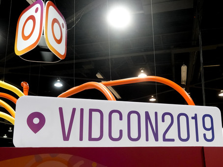 VidCon 2019 Crazy