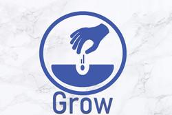 grow website