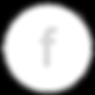 ikonercirkel-04.png