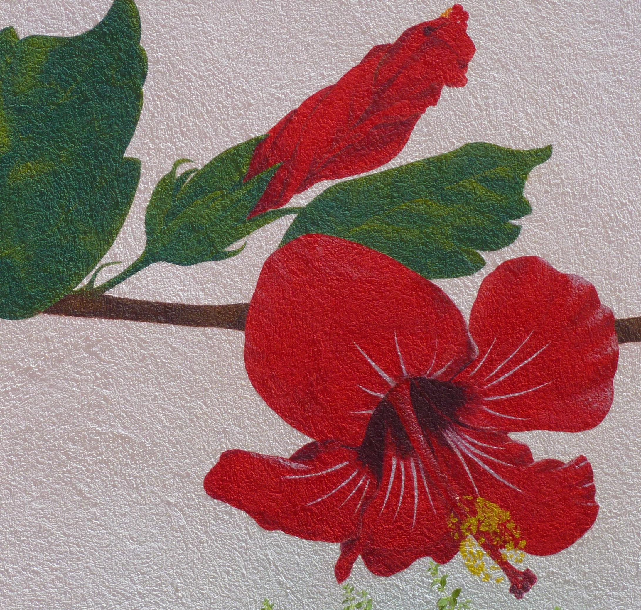 Détail fresque Hibiscus
