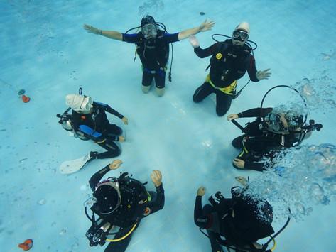[2019 8월] 성남스포츠센터 잠수풀 - 팀 워크숍 행사