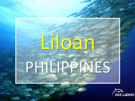 [2019 11월] 필리핀 릴로안 다이빙여행
