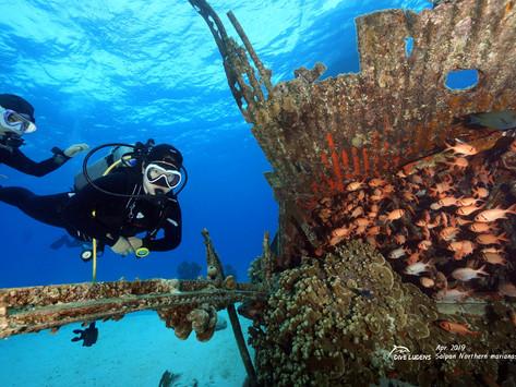 다이브루덴스의 사이판 다이빙 여행일지 #1  - B29, Ship Wreck, LauLau beach