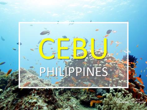 [2019년 5월] 필리핀 세부 다이빙투어 안내