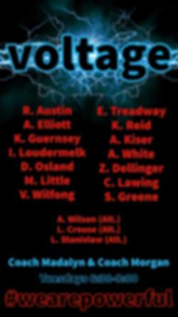 Voltage Team (2).png