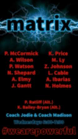 Matrix Team.png