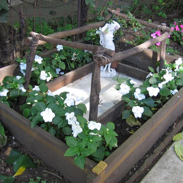 Aphrodite Bathing in my Garden