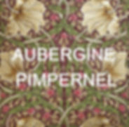 Aubergine%20Pimpernel%20SWATCH_edited.jp