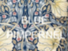 BLUE%20PIMPERNEL%20CUSHION%20(2)_edited.