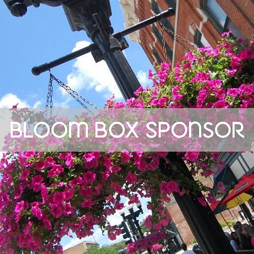 Bloom Box Sponsorship - Flowers