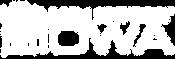 MSA-MSI-logos-02.png
