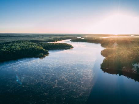 Biowash, Limpeza Sem Tóxicos – Família Protegida e Planeta Preservado