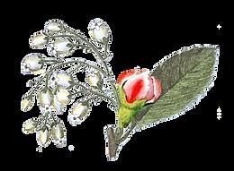 Illustrated Rose Bud