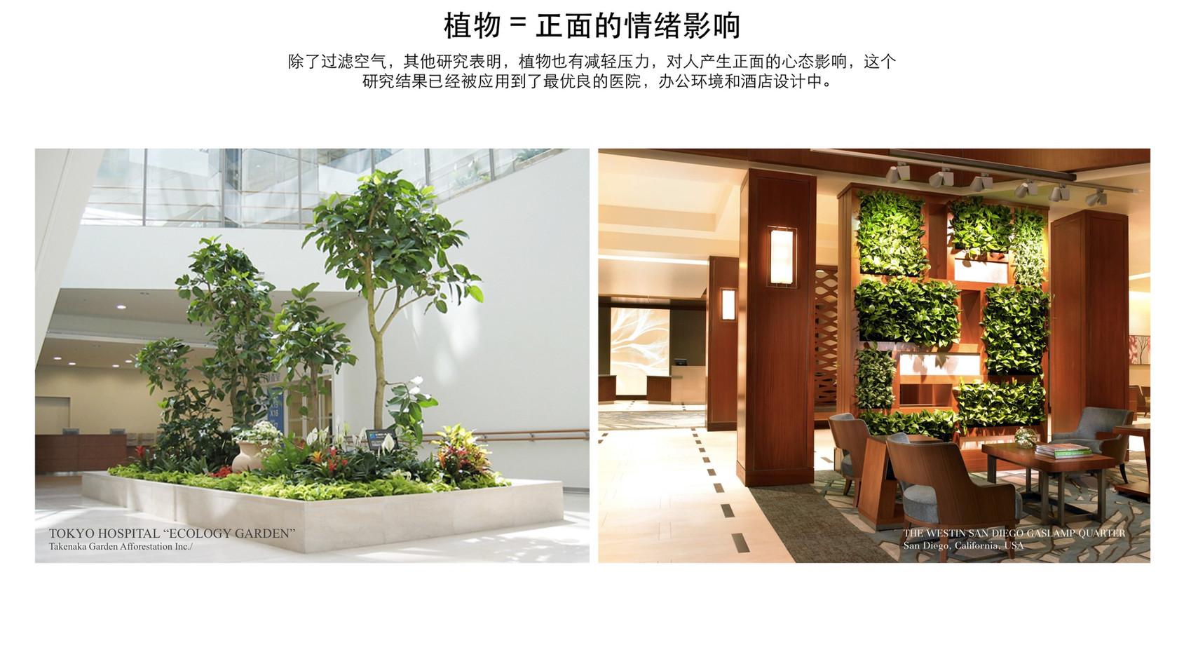 GREEN-AIR-HOTEL_ZH19.jpg