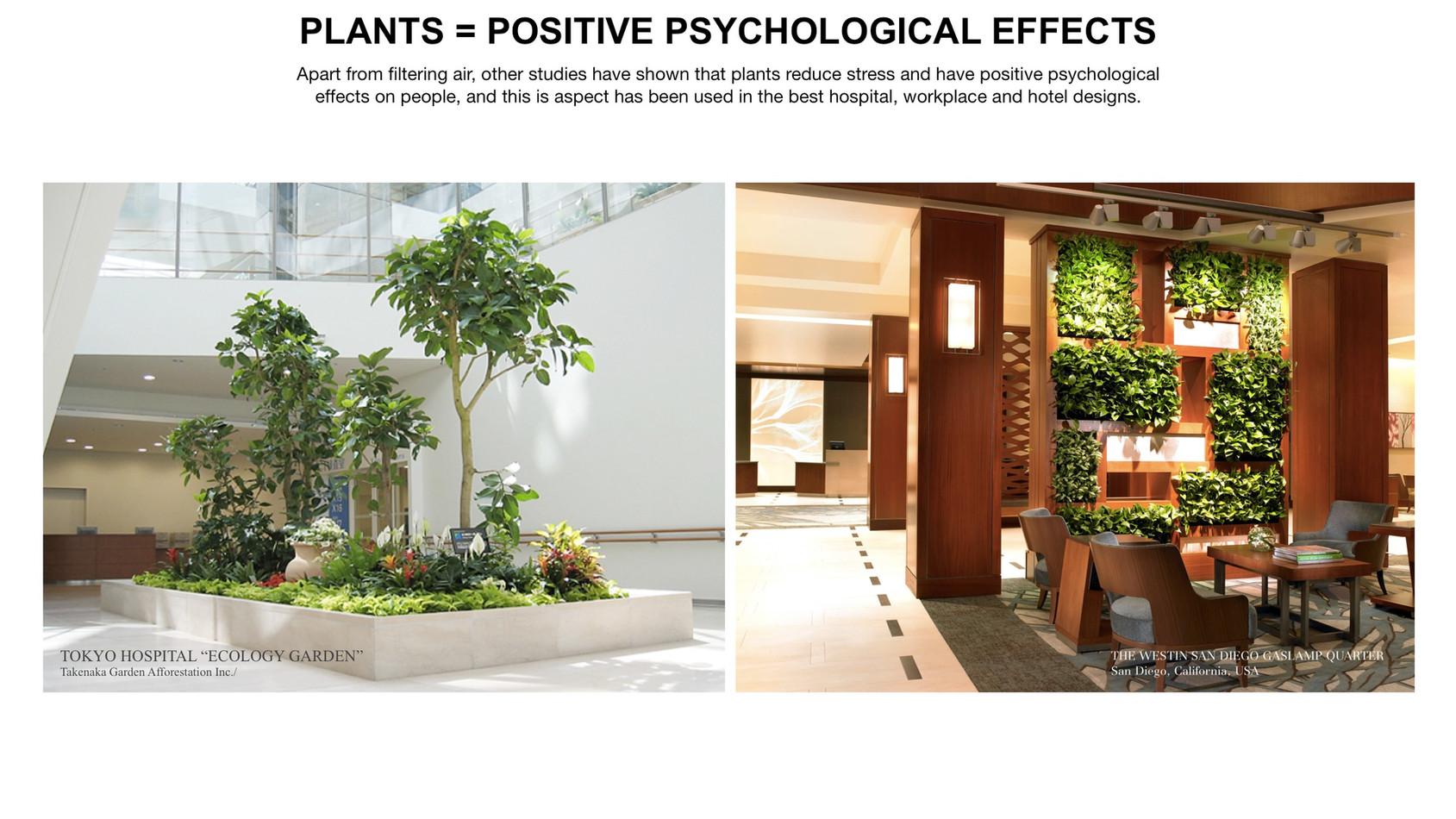 GREEN-AIR-HOTEL_EN19.jpg