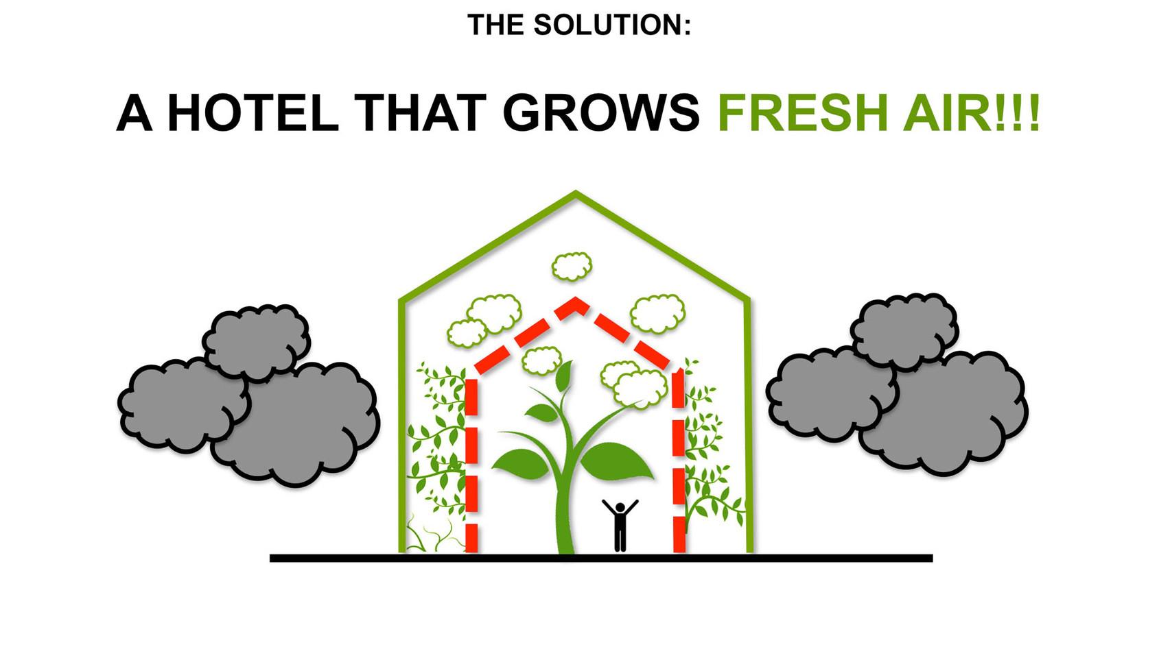 GREEN-AIR-HOTEL_EN13.jpg