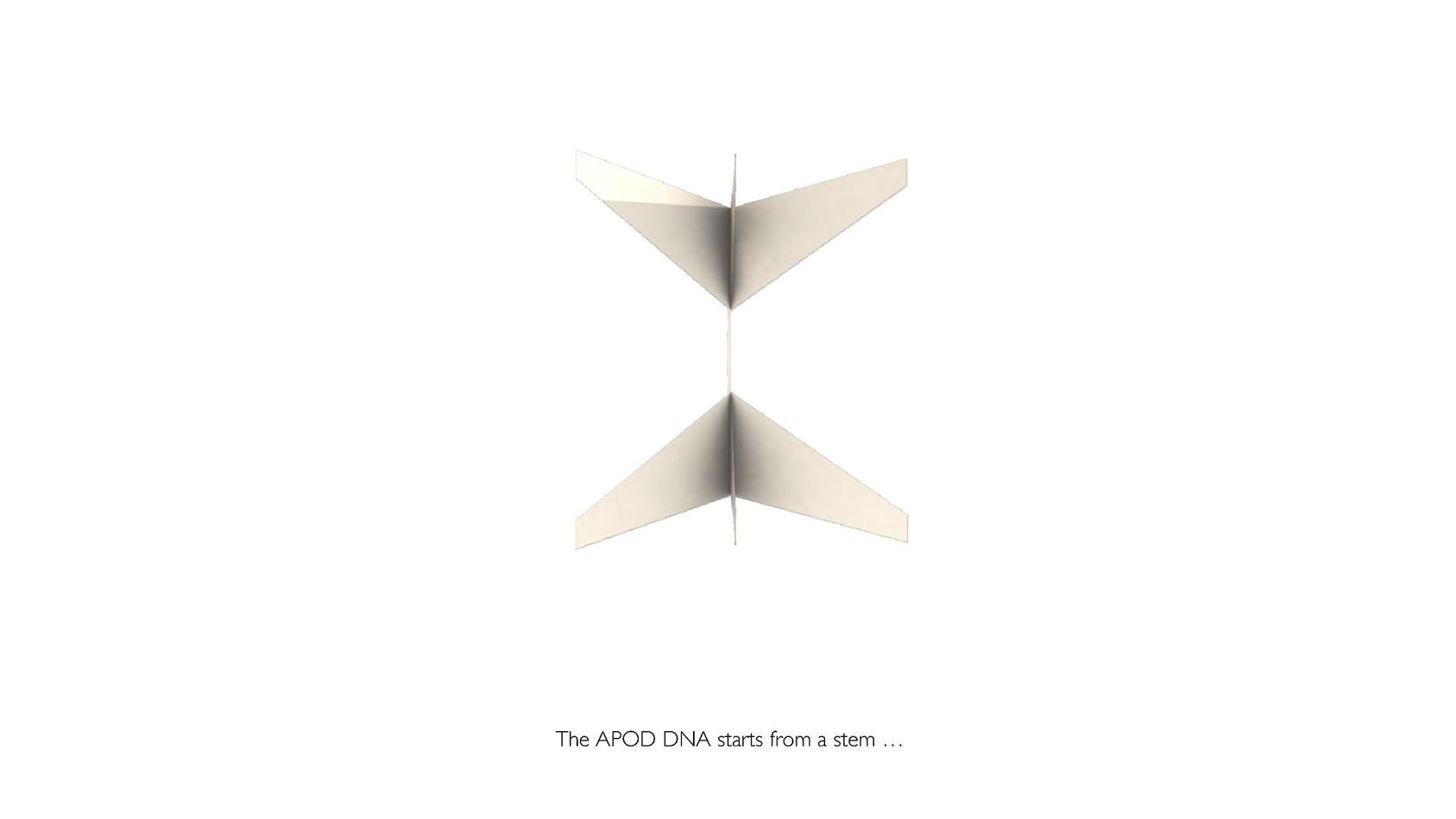 APOD-PAVILION-EN 02.jpg