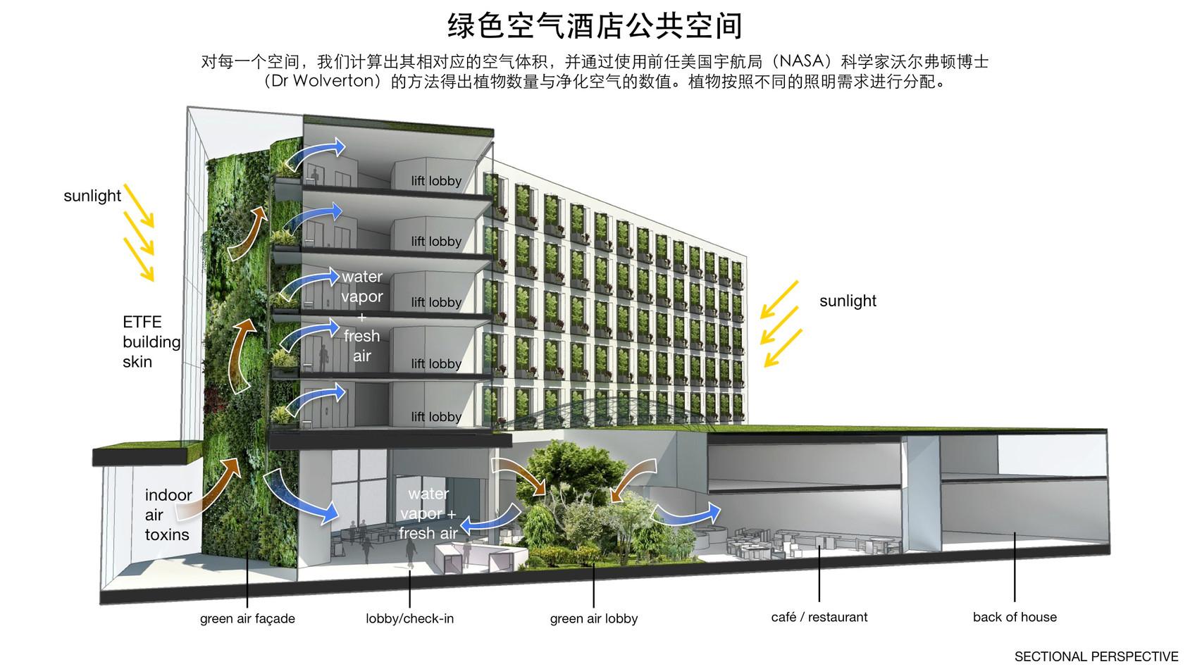 GREEN-AIR-HOTEL_ZH21.jpg