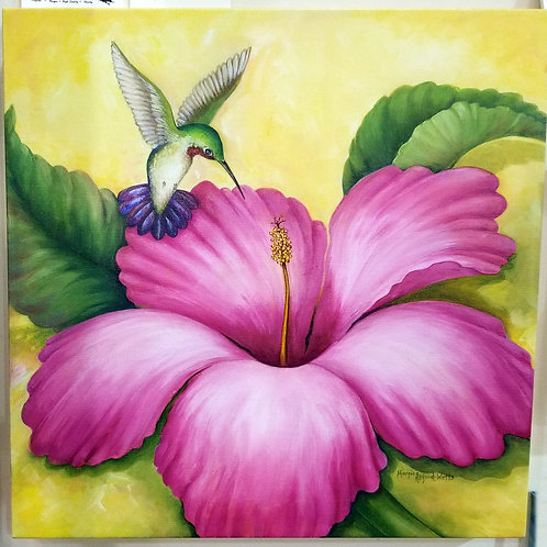 """Hummingbird and Pink Hibiscus"" Giclee"
