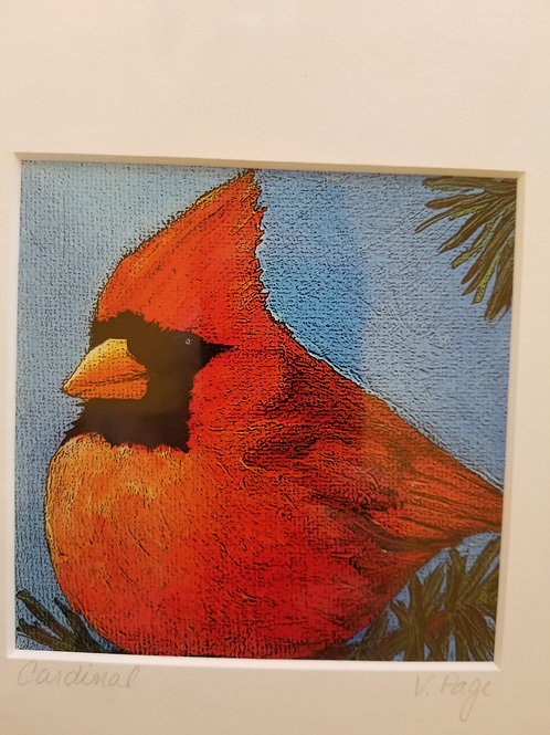 """""""Cardinal"""" print"""