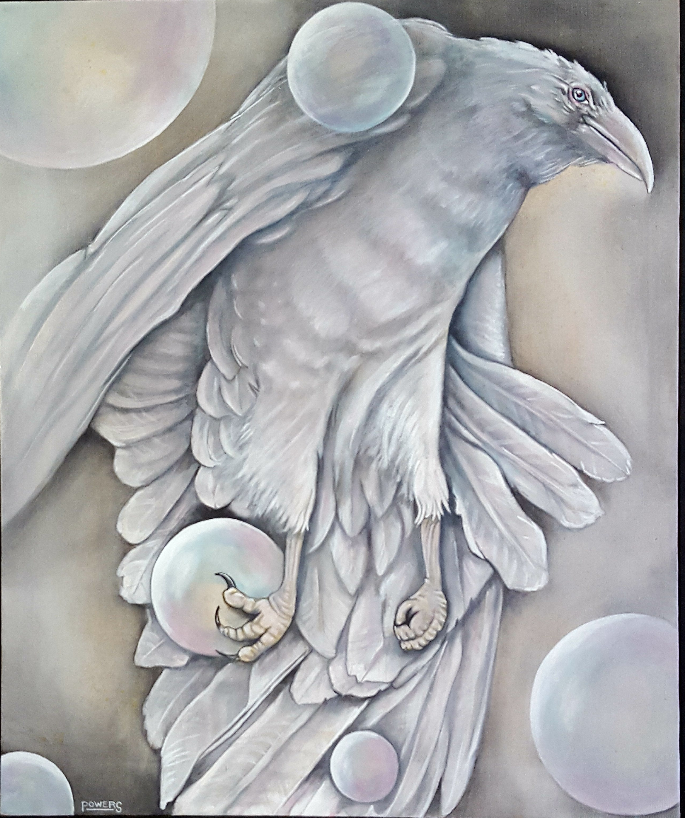 White Raven, by Dann Powers