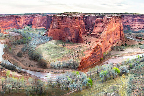 """Tseyi Overlook"" 12in x 36in Giclee Print on Canvas"